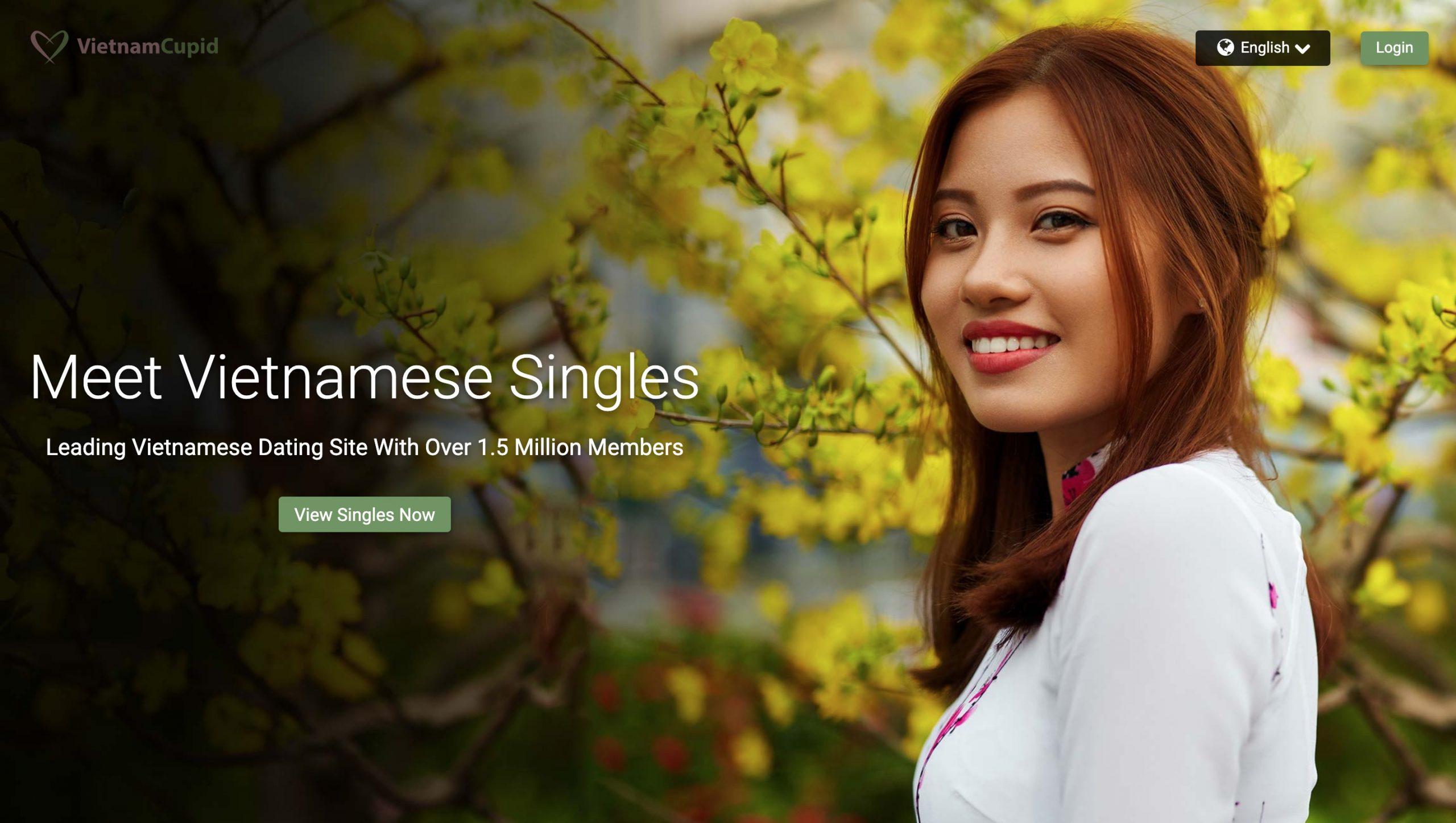 VietnamCupid maim page
